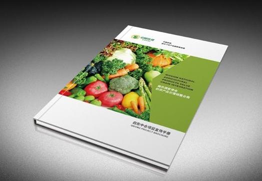 广州印刷样本画册设计 广州公司画册印刷