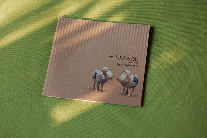 广州公司画册印刷设计 广州旅游画册设计制作价格低