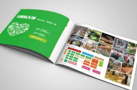 广州广告画册印刷多少钱 广州品牌画册设计印刷