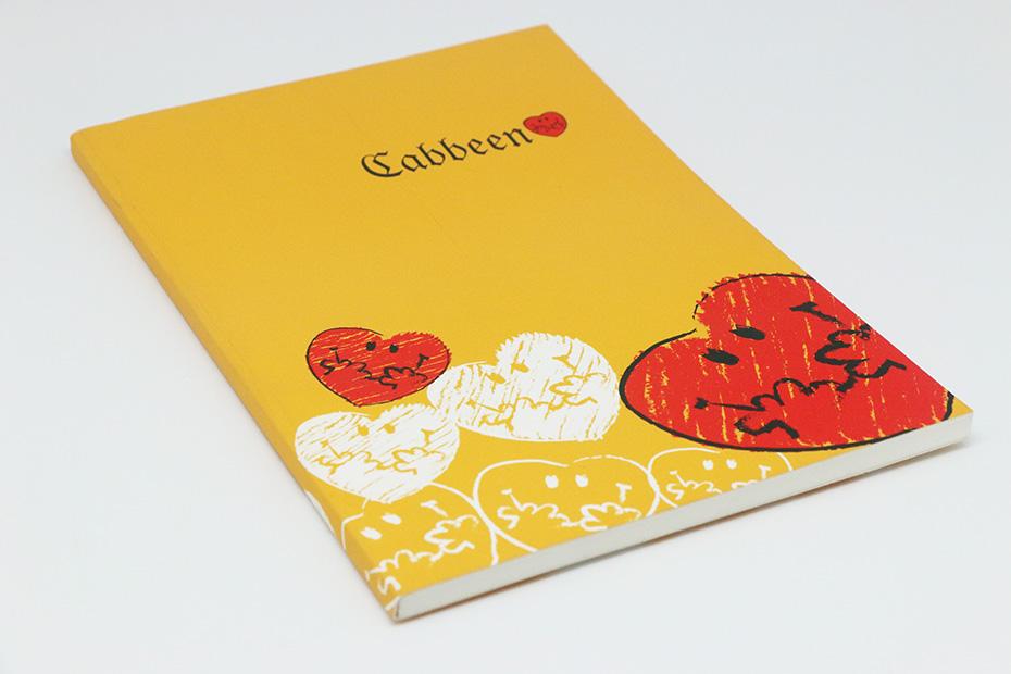 广州比较企业画册印刷厂 广州专业画册设计印刷案例