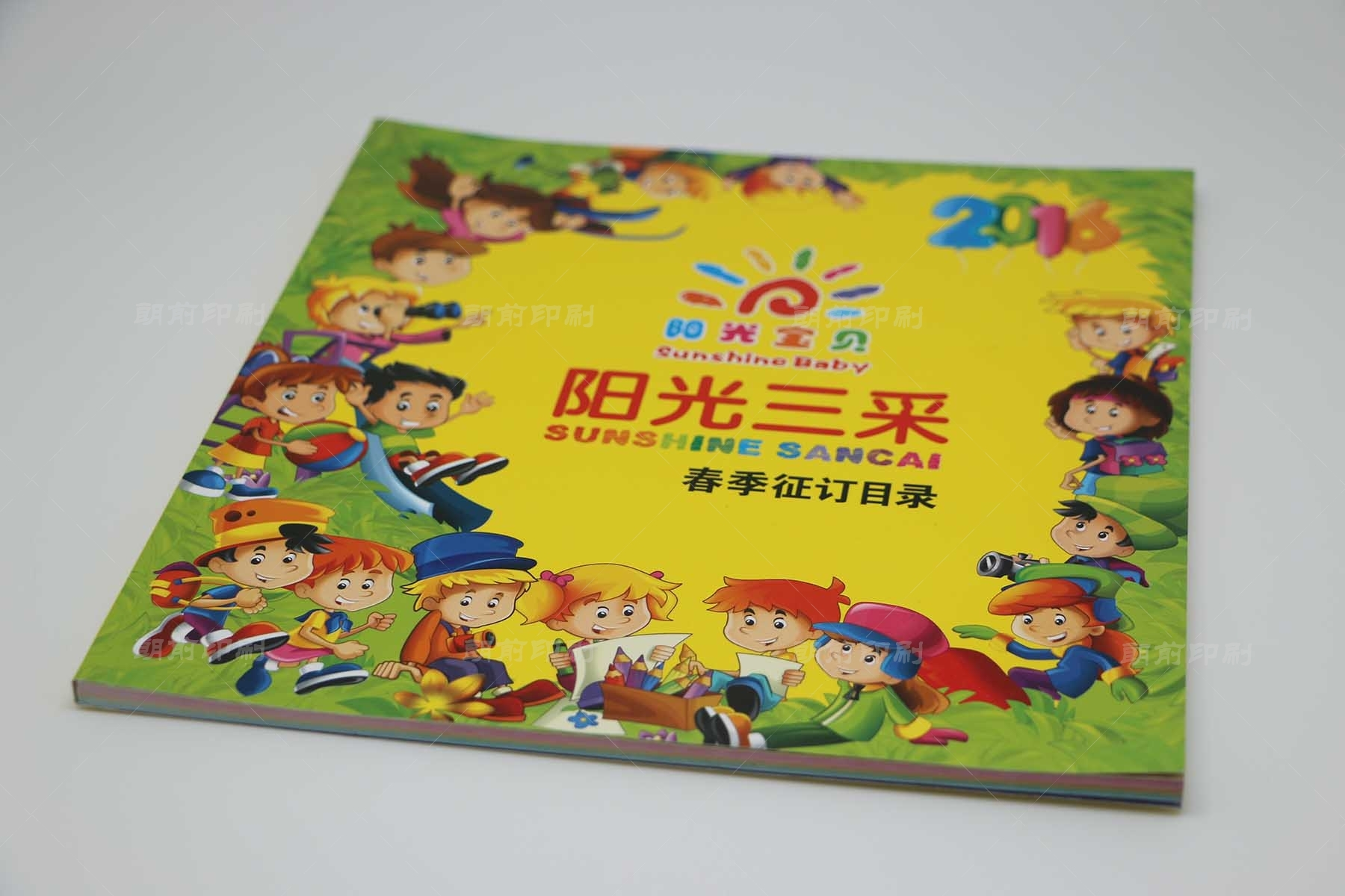广州包装设计公司画册印刷