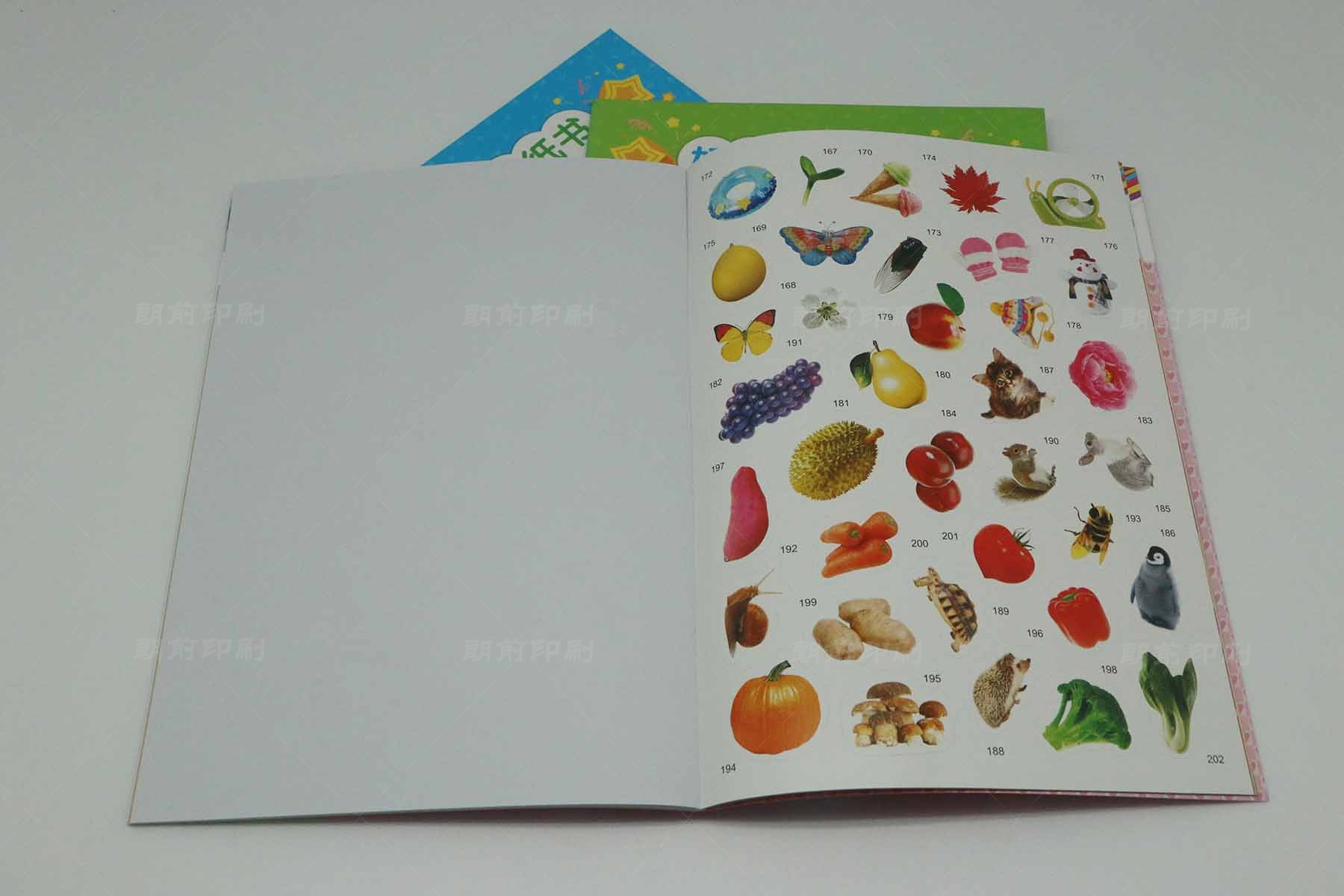 广州印刷品报价 广州画册设计印刷