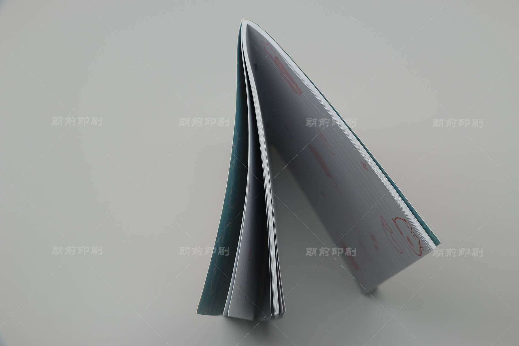 广州印刷厂 广州画册设计印刷班
