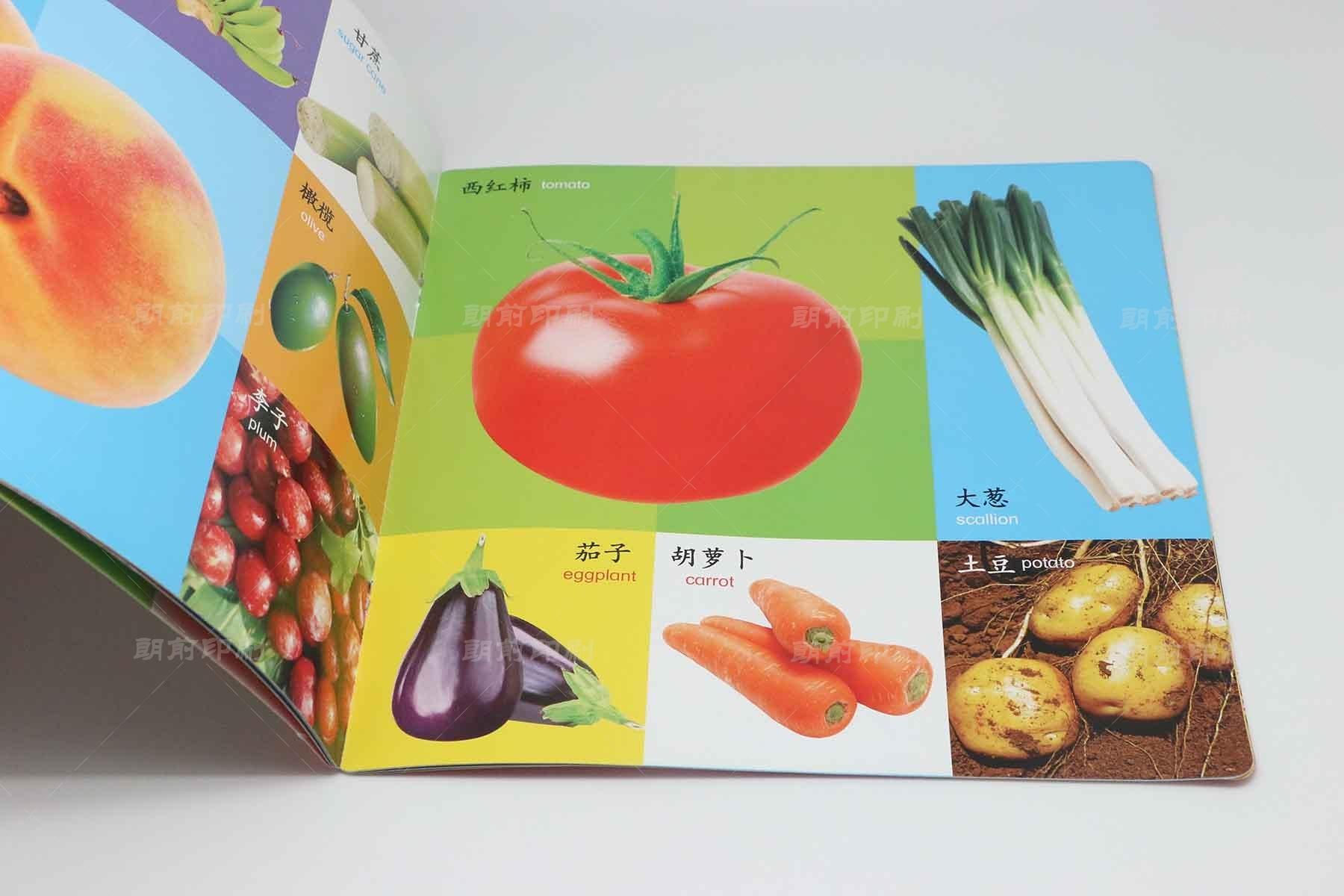 广州彩页画册设计印刷工厂 广州地产画册设计制作方案