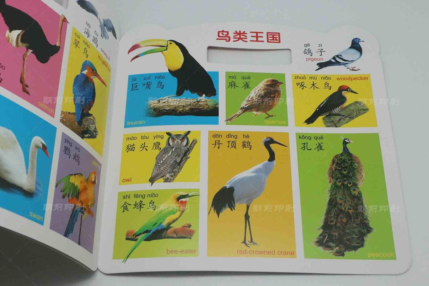 广州8P画册印刷价格表 广州旅游画册印刷设计公司简介