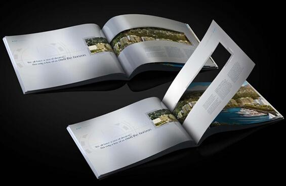 广州公司宣传画册印刷