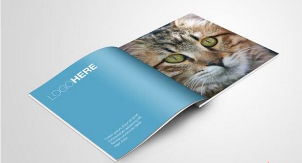 广州服装画册设计印刷厂 广州书刊画册印刷价格