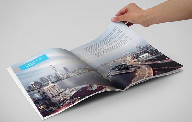 广州屋画册设计印刷 广州别墅栏杆画册制作公司