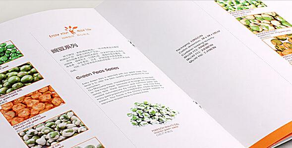广州画册印刷 广州知名画册制作公司