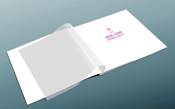 广州宣传单印刷画册价格 广州彩色画册印刷价格