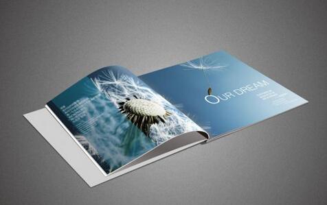 广州公司专业画册设计制作